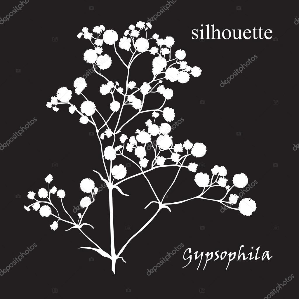 美しい手描きのシルエット シュッコンカスミソウの枝 ストックベクター