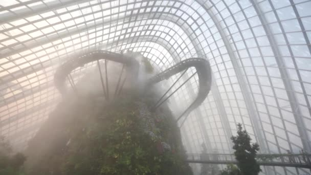 People at Cloud Forest Dome.