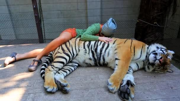 Tourist woman petting tiger