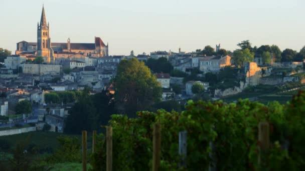 Francie, Gironde, Saint Emilion, Bordeaux vinic