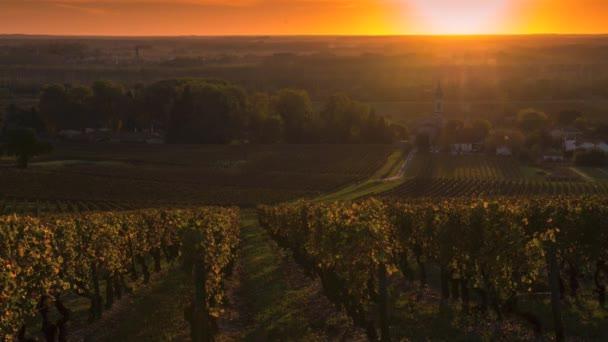 Vinice-Bordeaux vinic v zimní době zaniká