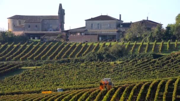 gépi betakarítás a szőlő szőlő
