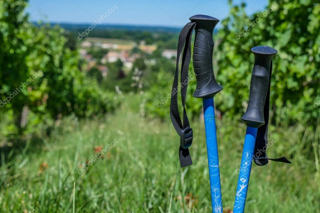 Wine Tourism-Pair of hiking shoes in the grass surrounded vineya