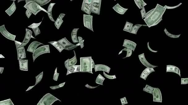 Peníze padající Loop - dolarové bankovky, které padají z oblohy. Všechna označení americké měny včetně $1, 5 USD, 10 USD, 20 dolarů, 50 dolarů a 100 dolarů. Alfa kanál obsažený. Bezešvá smyčka