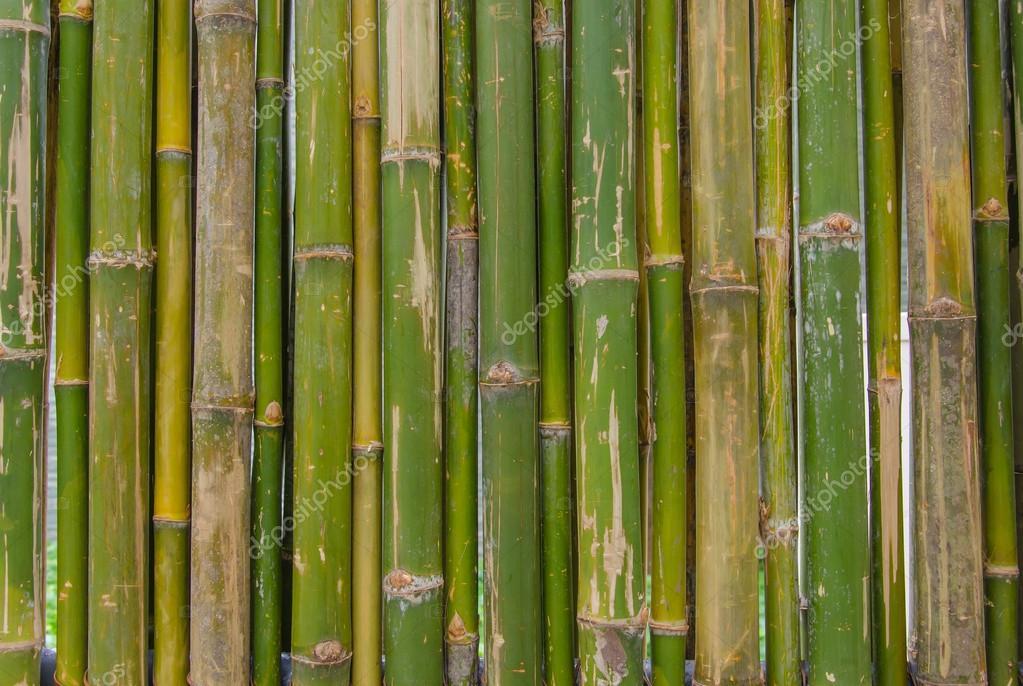 Bambus Zaun Texture Hintergrundmuster Stockfoto C Casanowe1 52318035