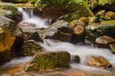 cascata nella giungla profonda foresta pluviale. Krok e dok cascata sarab