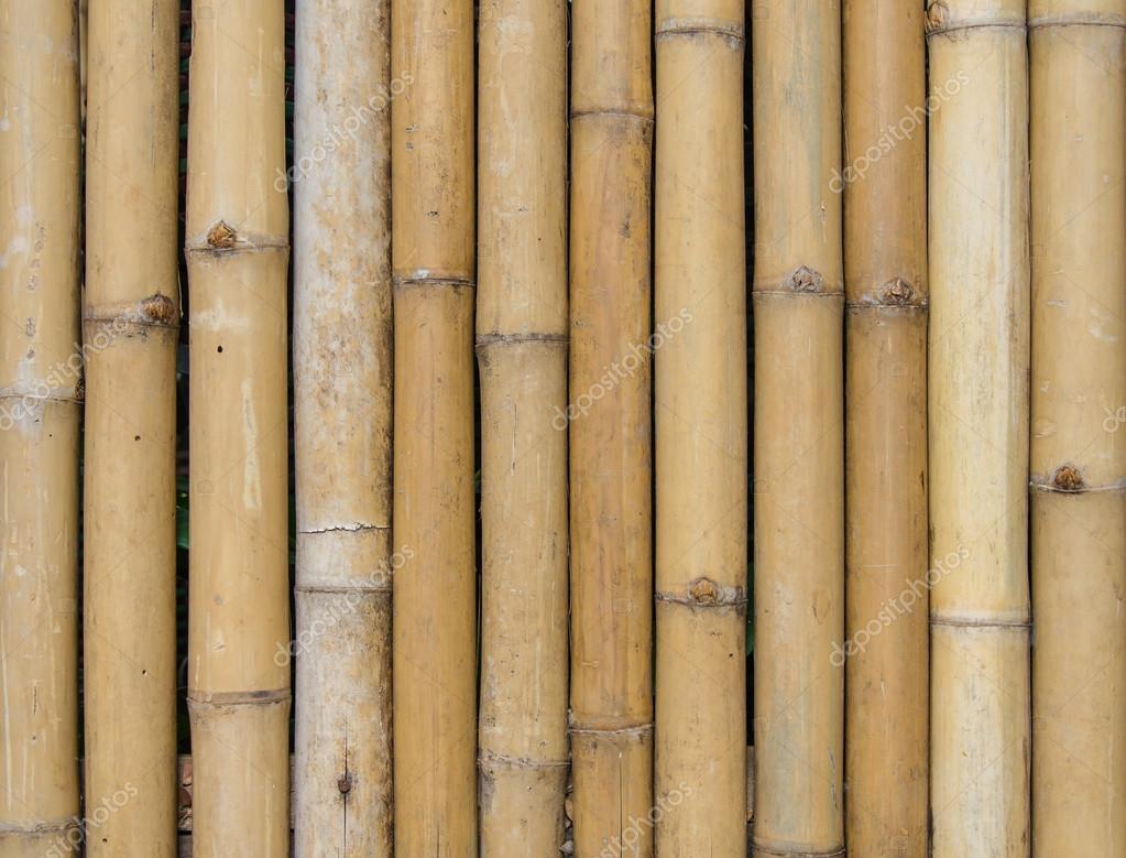 Bambus Zaun Texture Hintergrundmuster Stockfoto C Casanowe1 53098831