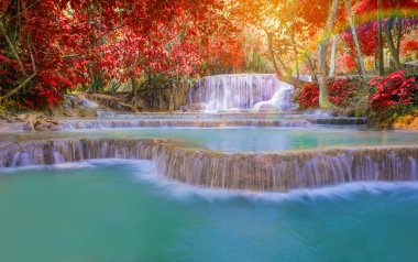 Waterfall in rain forest (Tat Kuang Si Waterfalls at Laos.)