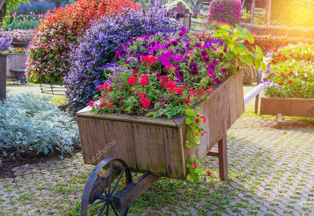 Colorato di fiori della petunia su carrello in legno in