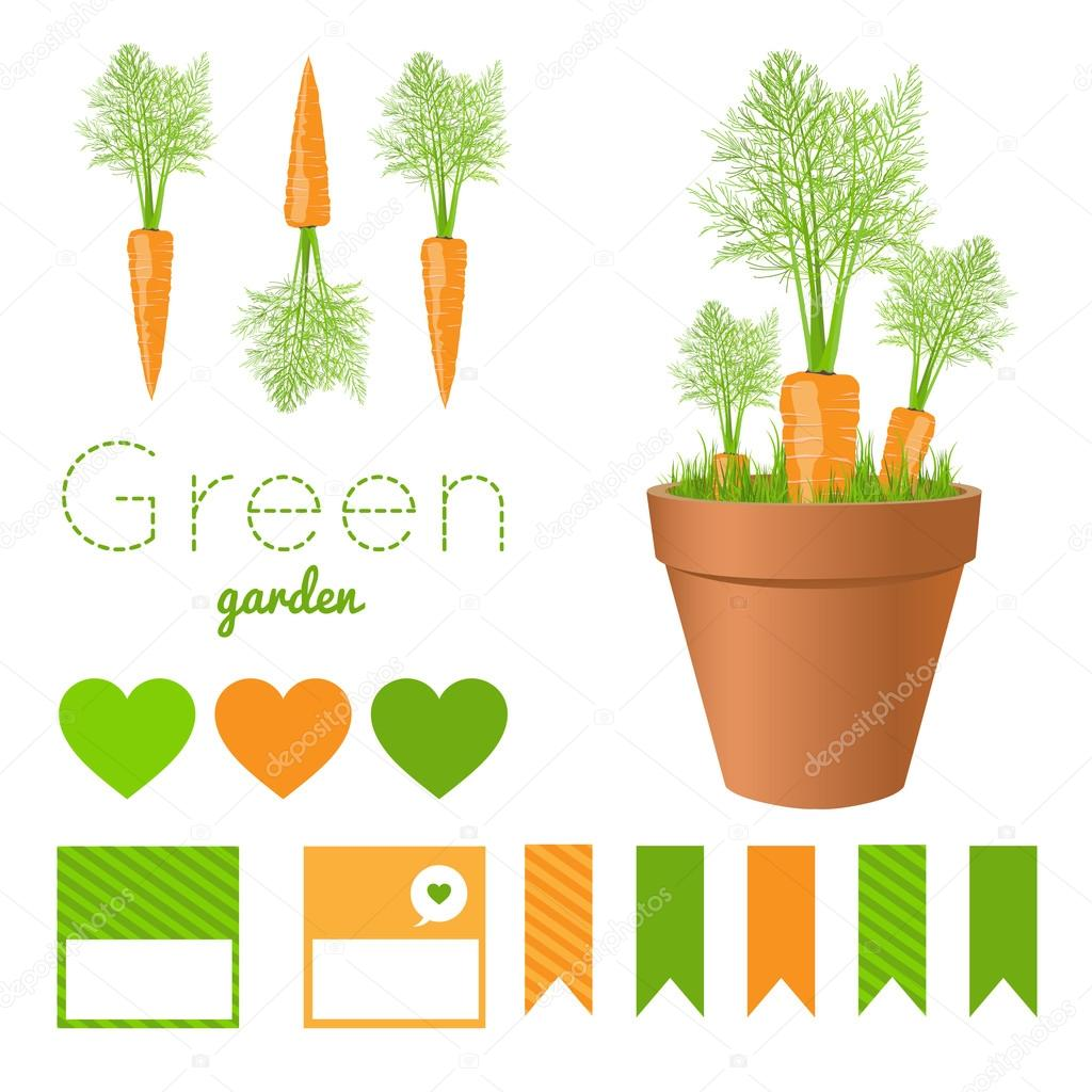 picture about Printable Grass identify Gr printable Mounted of backyard garden pots with clean carrots and
