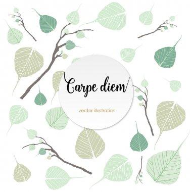 Carpe diem. Latin aphorism