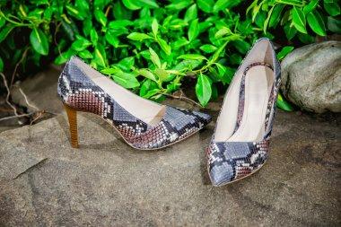 Light summer sandals female in nature, advertising shoe