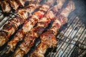 Vaříme maso na grilu, grilování, kebab