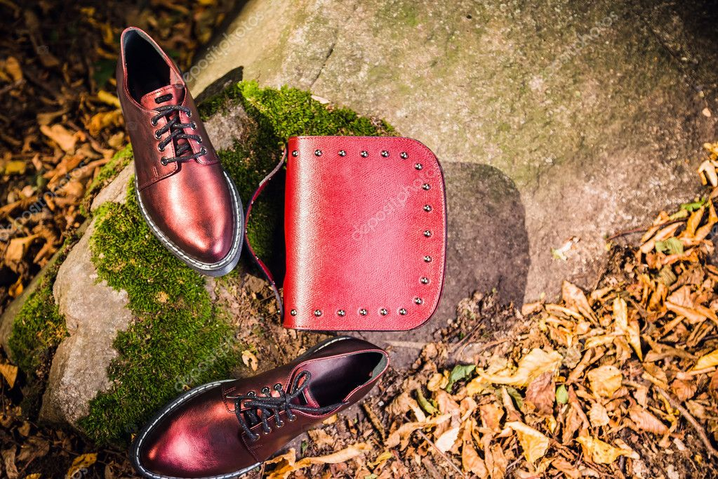 80a332181bc Ιταλικά παπούτσια και κόκκινη γυναικεία τσάντα σε ένα βράχο στο δάσος–  εικόνα αρχείου