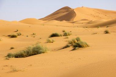 The Desert Of Erg Chebbi