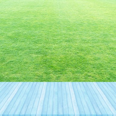 Wood floor blue pastel colour perspective on fresh spring green