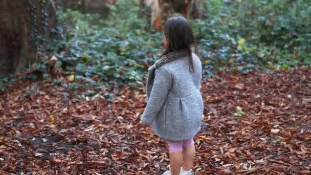Malá brunetka dívka stojící na listím pokryté zemi obklopené lesy