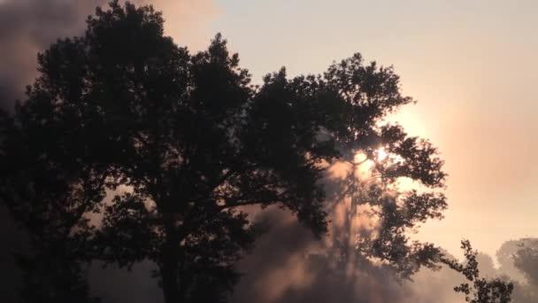 Kouř z výbuchů války