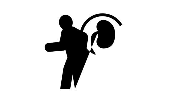 fájdalom vese vonal ikon animáció