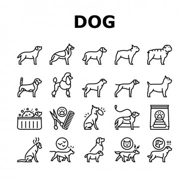 Dog Domestic Animal Collection Icons Set Vector. Yorkshire And Rottweiler, Beagle And French Bulldog, Golden Retriever And German Shepherd Dog Black Contour Illustrations icon