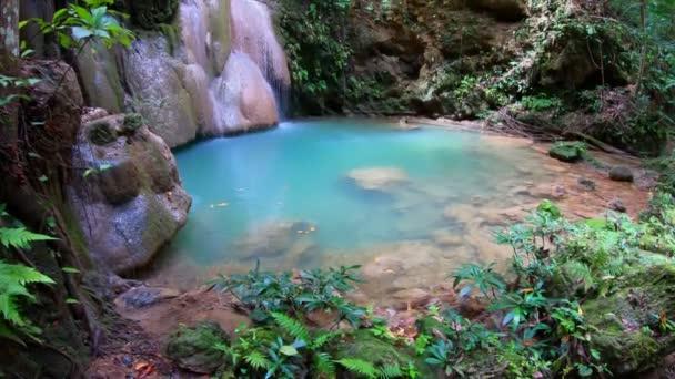 4K Video, Wang Tong vodopád se nachází v Buatong vodopád a Chet Si Fontána Národní park, Chiang Mai, Thajsko. Vodopád se nachází v hlubokém deštném pralese