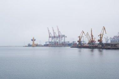 Cargo cranes, Odessa sea port