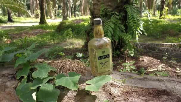 Perak, Malajzia. 2020. november 17.: Egy üres, elfogyasztott KAPAK sörösüveget találtak a Kg Koh Palm ültetvény területén fekvő elesett pálmafa törzsén..