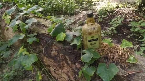 Perak, Malajzia. 2020. november 23.: Egy üres, elfogyasztott KAPAK sörösüveget találtak a Kg Koh Palm ültetvény területén fekvő elesett pálmafa törzsén..