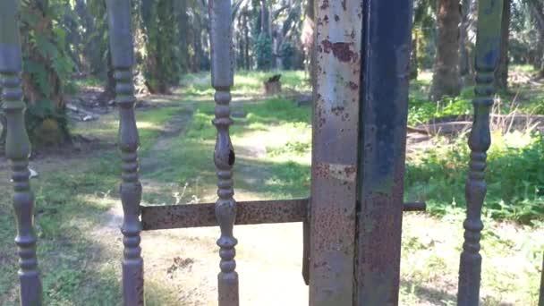 Korrodiertes braunes rostiges Metalltor auf der Plantage
