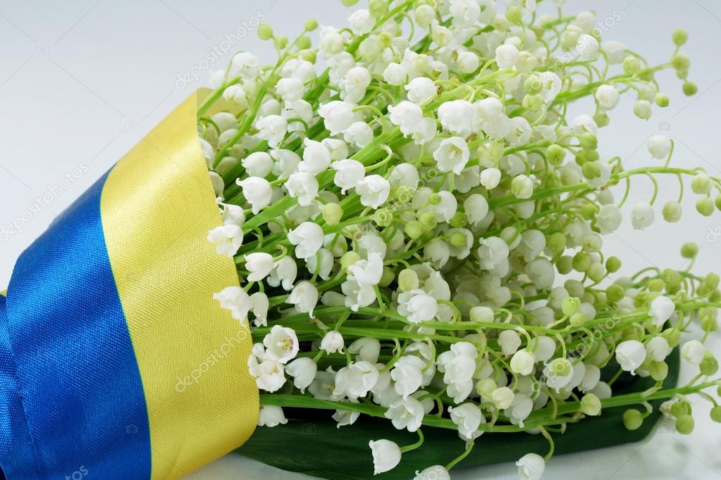 bouquet of lily of the valley covered by the Ukrainian flag.