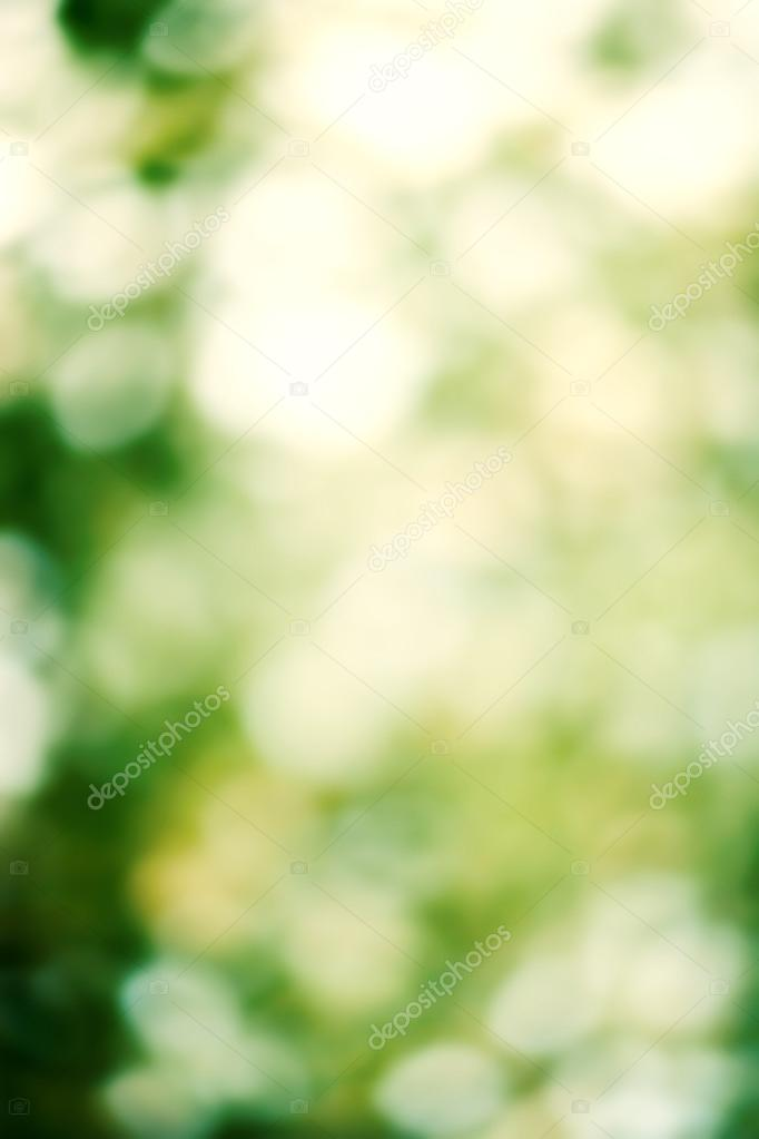Summer Natural green blurred background