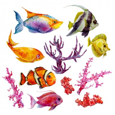 Marine set of Watercolor Vector Tropical Fish, Seaweed Coral Algae and Jellyfish