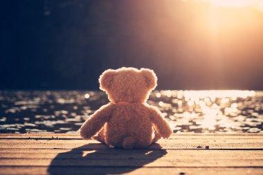 Teddy bear on pier