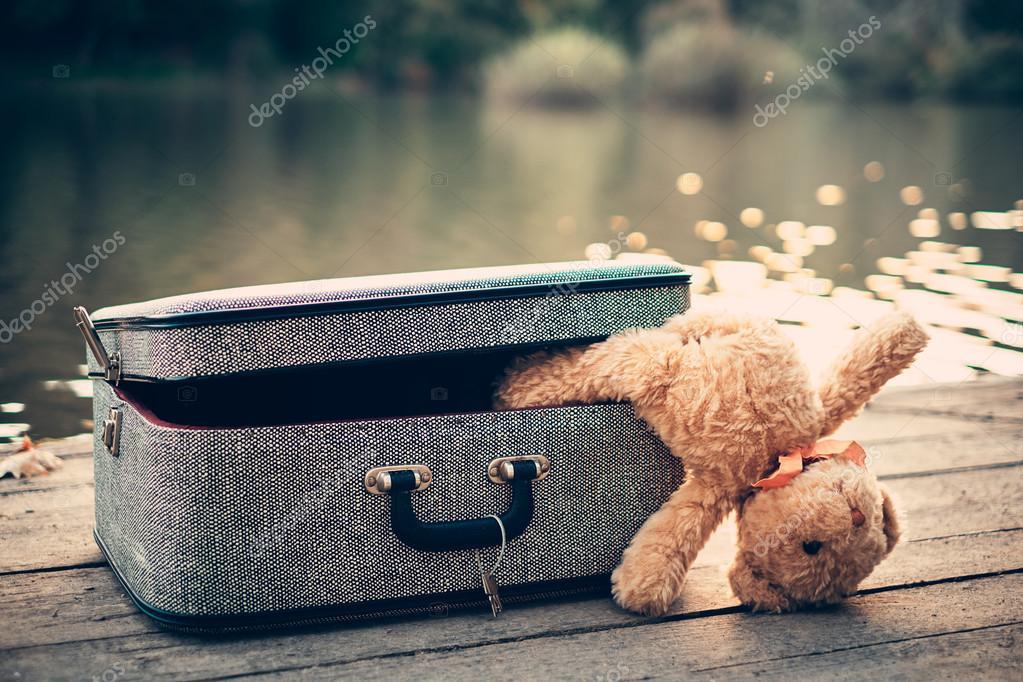 Teddy bear in bag