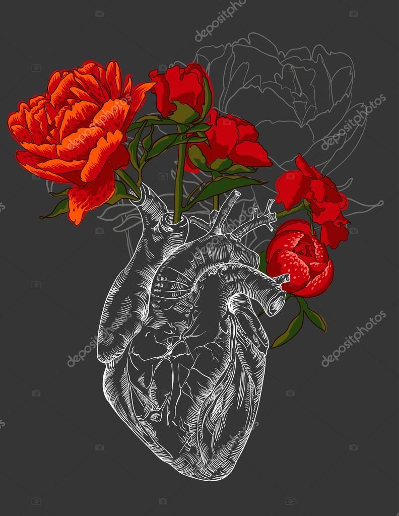 Dessin Coeur Humain Avec Des Fleurs Image Vectorielle Mamziolzi