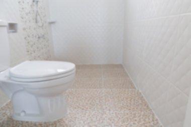 lavatory flush toilet (blurry defocused for interior background)