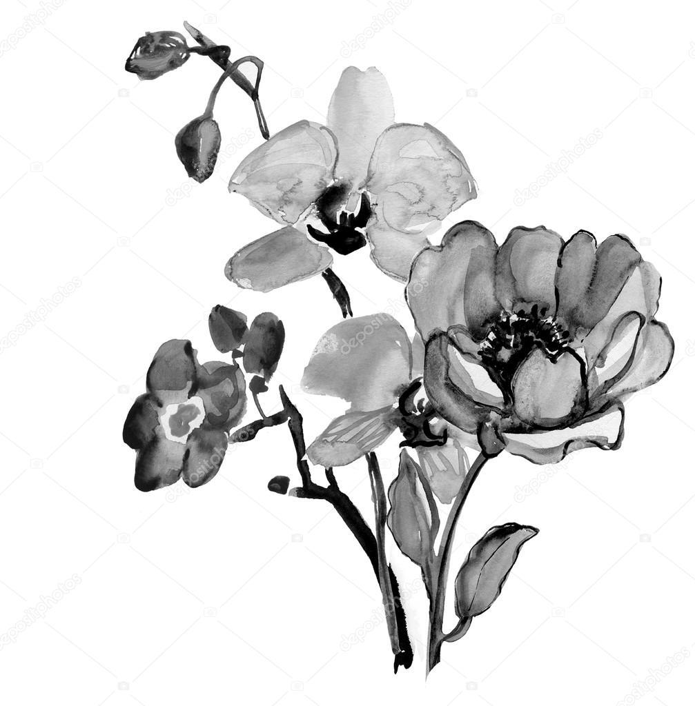 11 Gorgeous Ͽ� Black� Blooms: Fotos De Stock © Olies #73831079