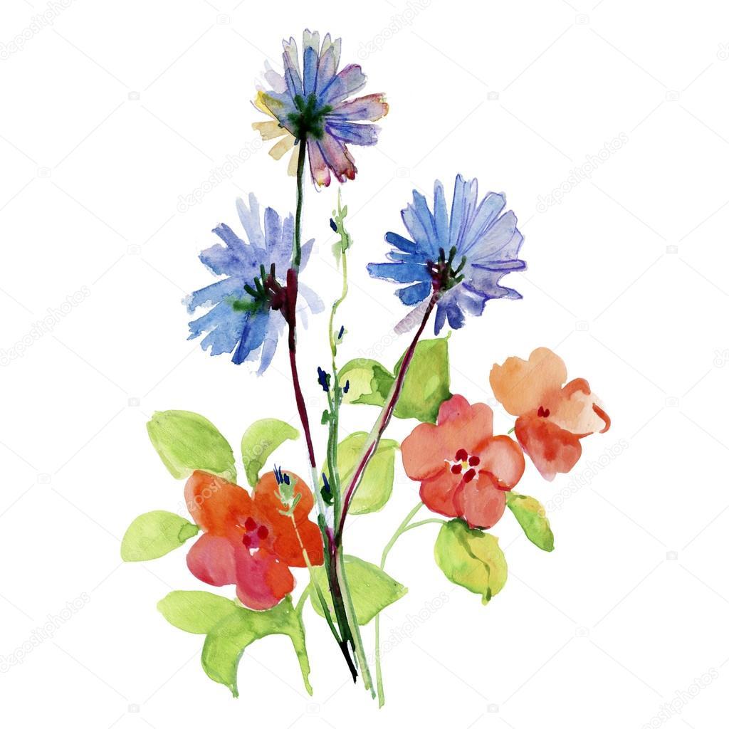 acquerello di fiori stilizzati foto stock olies 91943570