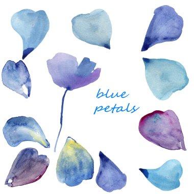 Set of different blue petals