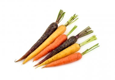Group of vibrant variety of different colors of carrots