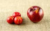 Nahaufnahme des Bonsai Cherry Pflaumen neben europäischen rote Pflaume