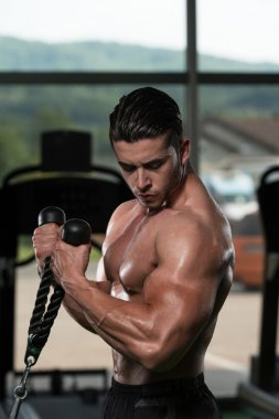 Bodybuilder Doing Exercise For Biceps