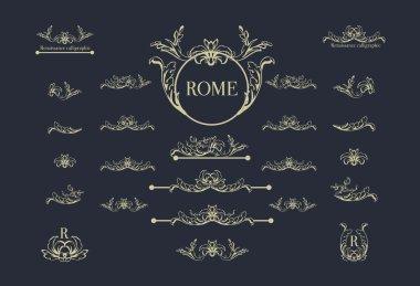 set of calligraphic design elements,