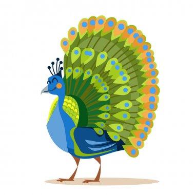 Cute cartoon peacock.