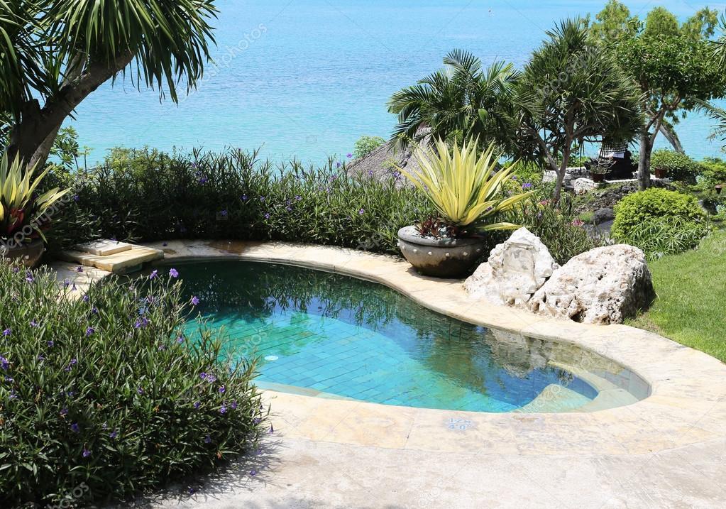 beautiful swimming pool in the garden