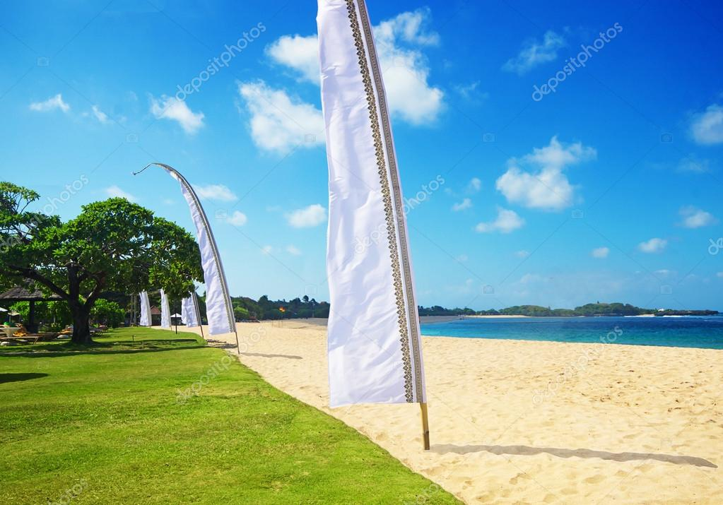 Beautiful coast with flag with space for text