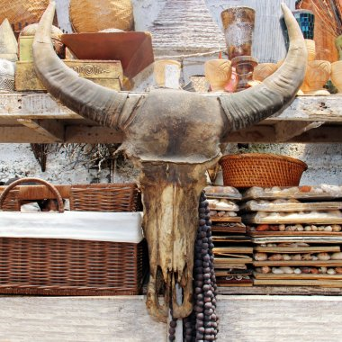 Buffalo head on the market