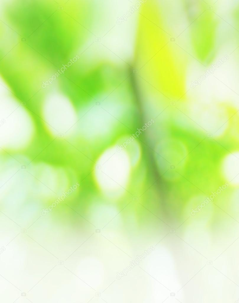 Green blurred nature background