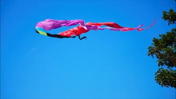 One Kite Dodging Another