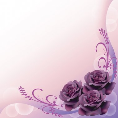 Purple roses background for adult